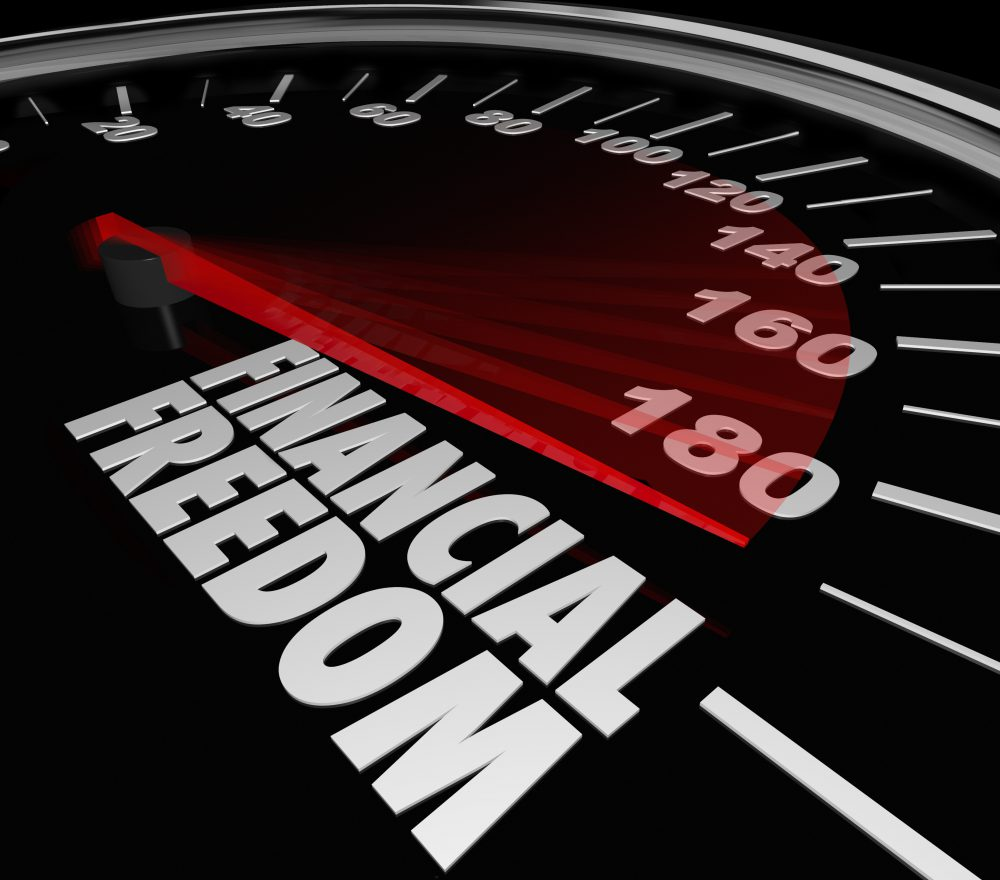 Financial Freedom Speedometer Earning Income Money Savings