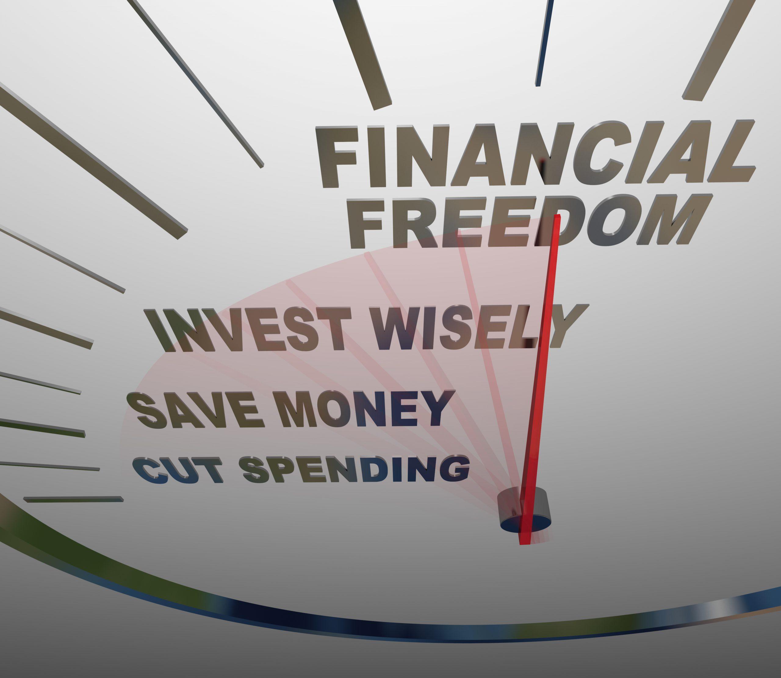 Financial Freedom Gauge